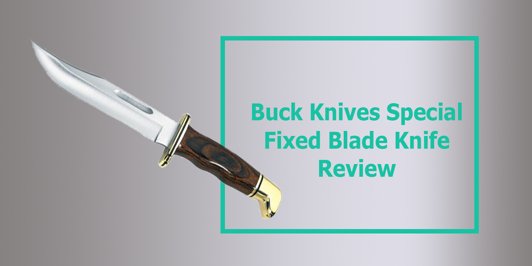 Buck Knives Special Fixed Blade Knife Review