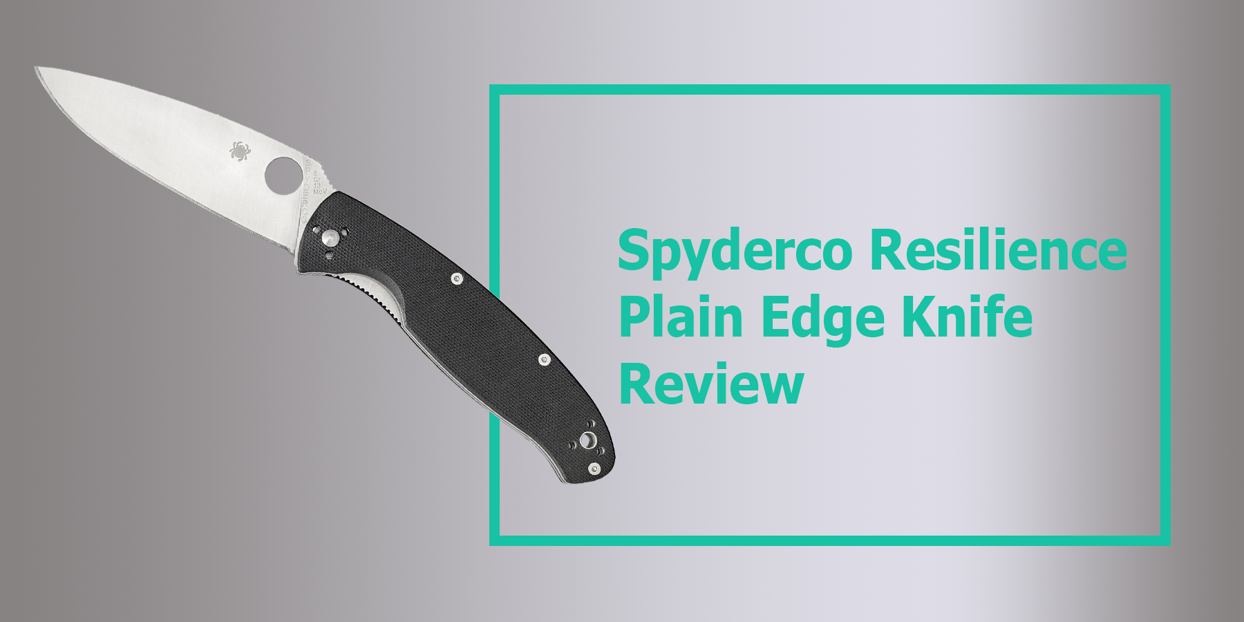 Spyderco Resilience Plain Edge Knife Review