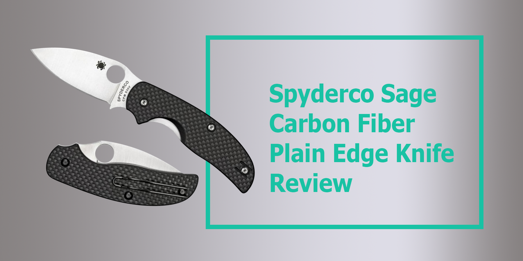 Spyderco Sage Carbon Fiber Plain Edge Knife Review